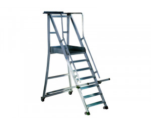 pitched-ladders-pitched-ladders